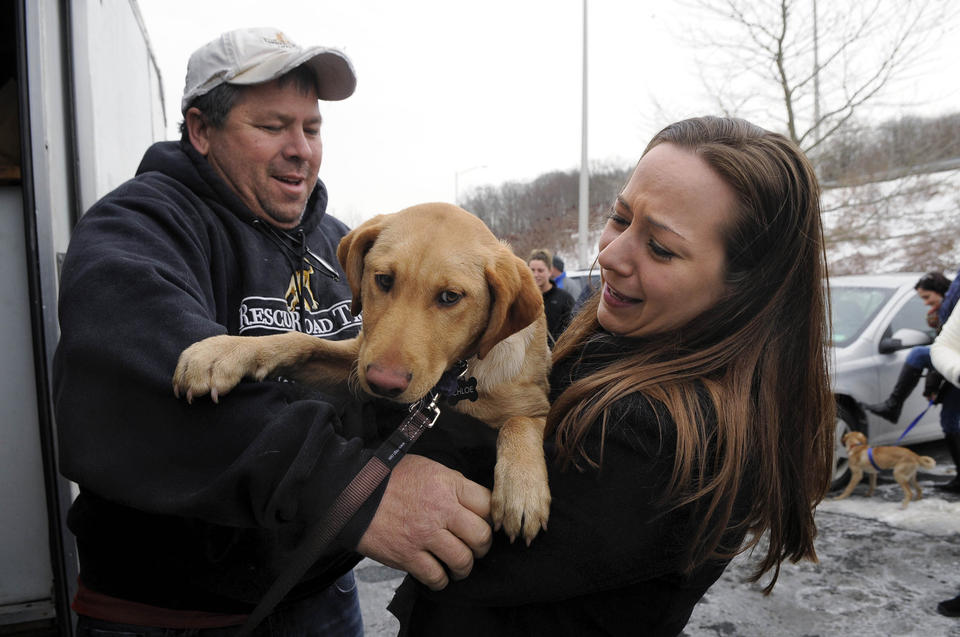 greg mahle handing off dog