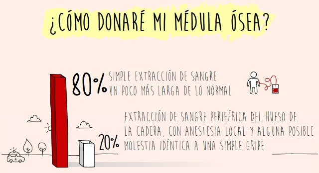 donacion_mo2
